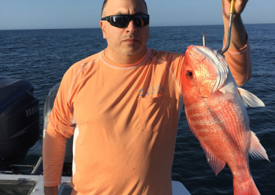 2015 Red Snapper